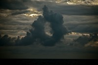 storm gelane